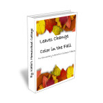 Leaves Change Color in the fall ebook cover_prod im _edited-1