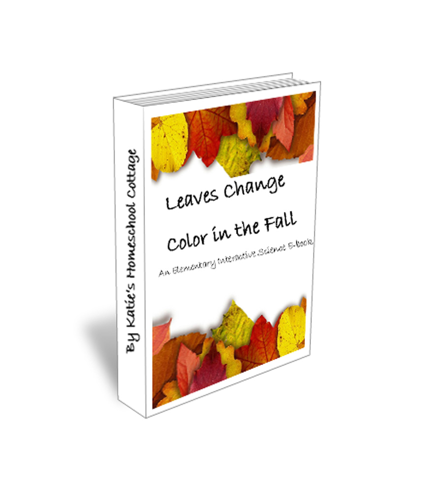 Leaves Change Color In The Fall Katie 39 S Homeschool Cottage
