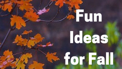 How to Conduct a Fall Nature Study